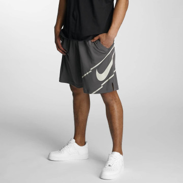 Nike Shorts Dry Training grå