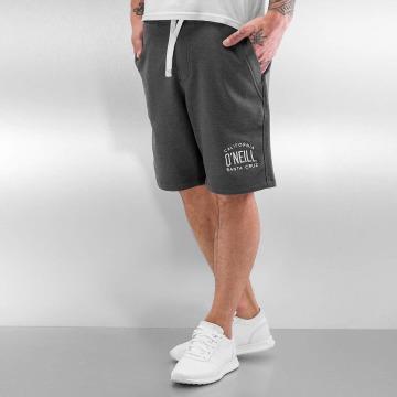 O'NEILL Shorts PCH grigio