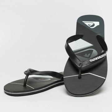 Quiksilver Sneaker Molokai Slash Fade Logo schwarz
