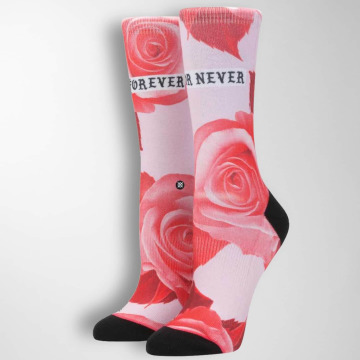 Stance Socks Dedication Tomboy pink