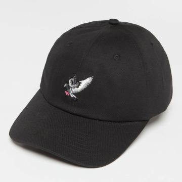 Staple Pigeon Snapback Caps Pigeon Flying čern