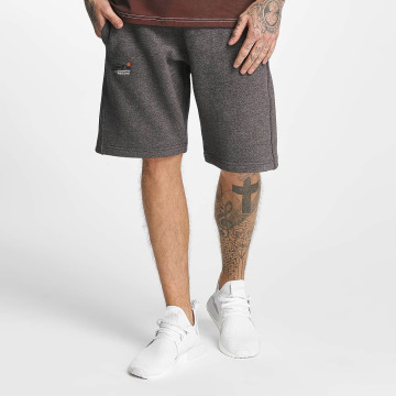 Superdry Shorts Orange Label Cali grau