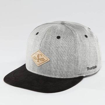 TrueSpin Snapback Caps Laurel šedá