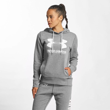 Under Armour Hoodie Favorite Fleece Wordmark gray
