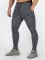 Beyond Limits Спортивные брюки Baseline серый