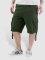 Reell Jeans Shorts New Cardo grün