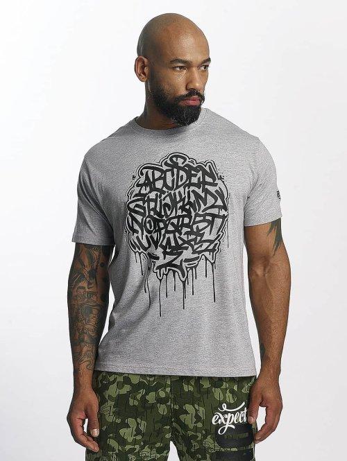 Dangerous DNGRS T-Shirt Alpha DMARK gris