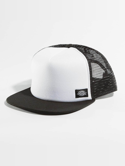 Dickies Trucker Cap Fort Jones schwarz