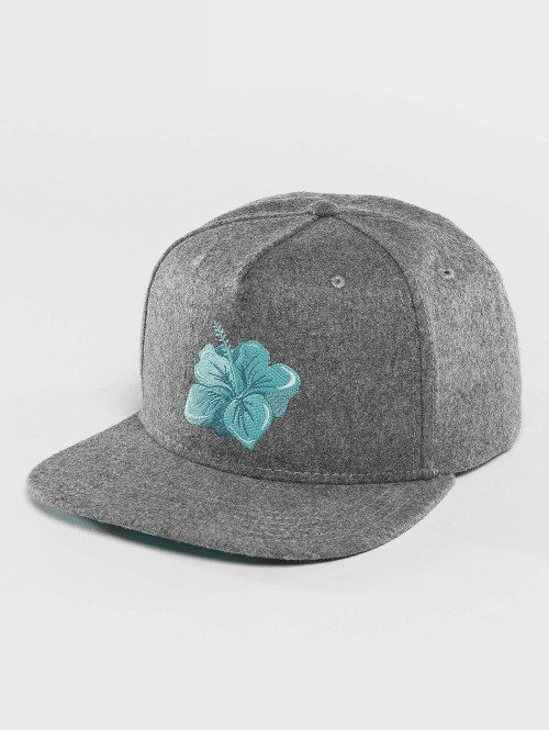 Just Rhyse Snapback Cap Hawaiian grau