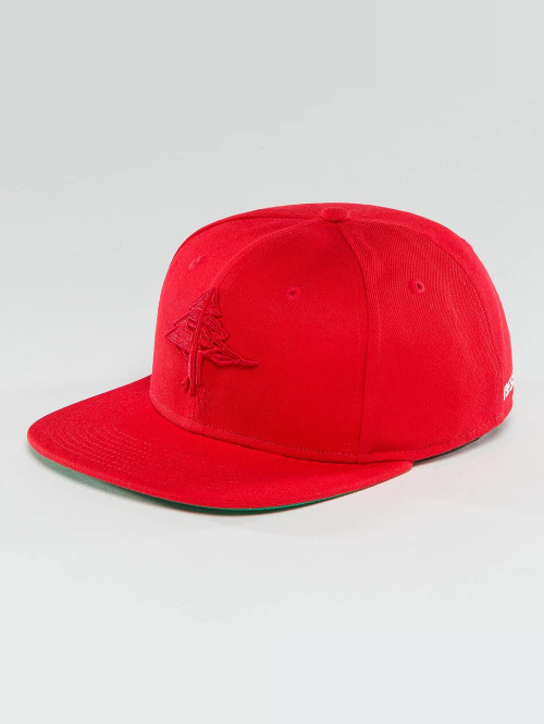 LRG Snapback Cap Research Collection rot