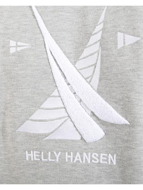 Helly Hansen Pullover  grau