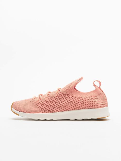 Native Shoes Sneaker Ap Nova Liteknit pink