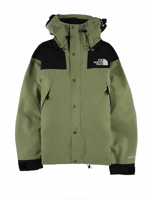 The North Face Übergangsjacke Face 1990 Mtn Gtx grün
