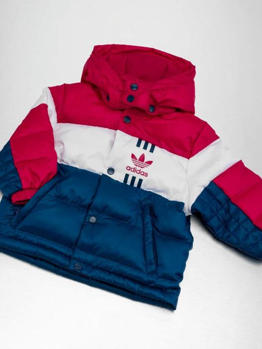 99e2436ce8e adidas originals jas / winterjas ID-96 in pink 322541