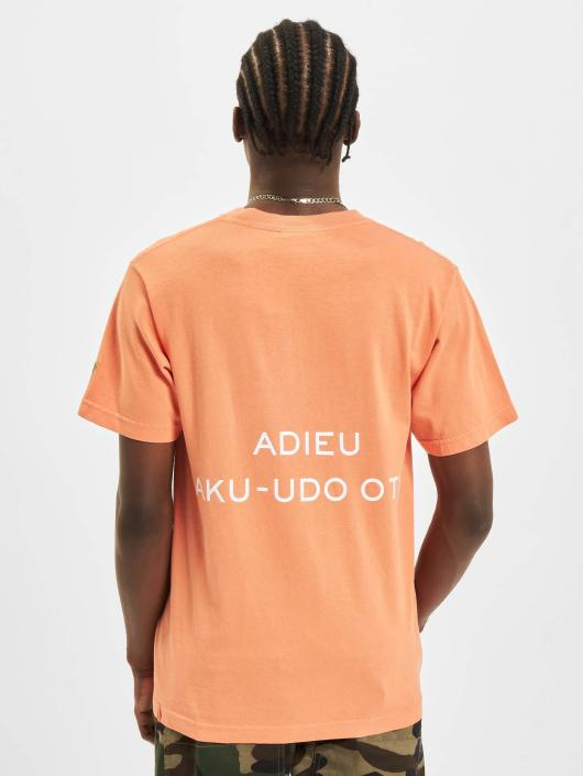 Carrots T-Shirty  pomaranczowy