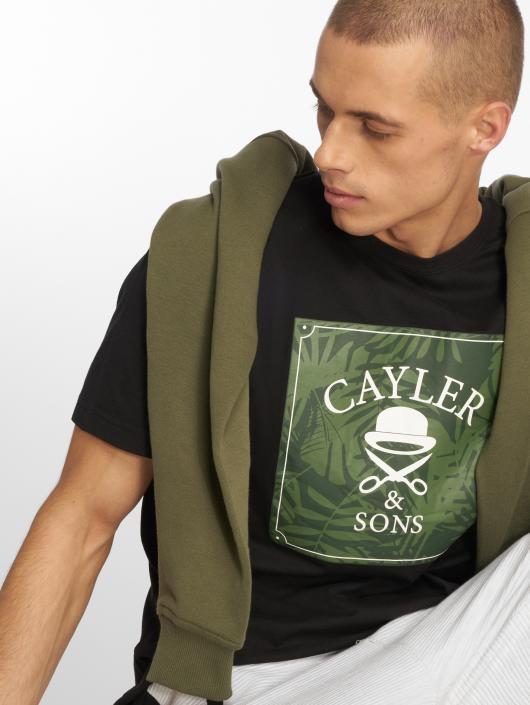 Cayler & Sons t-shirt C&s Wl Palmouflage Box zwart