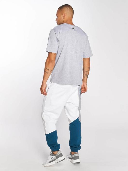 Dangerous DNGRS T-Shirt Collos grau