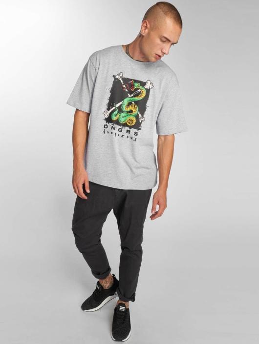 Dangerous DNGRS T-Shirt Snake grau