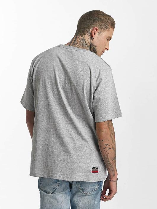 Dangerous DNGRS T-Shirt Allcolours gray