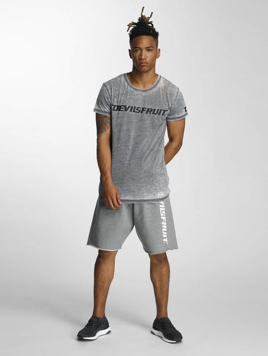Devilsfruit T-Shirt Ransome gray