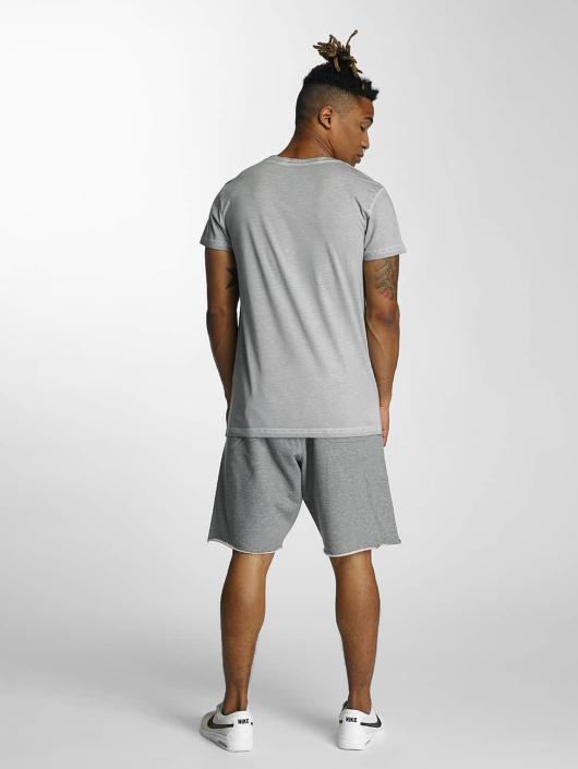 Devilsfruit T-skjorter Holla grå