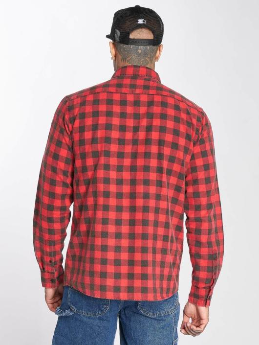 Dickies Shirt Rock Hall red