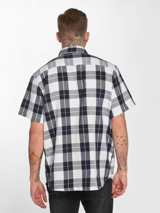 Dickies Shirt Lockesburg white