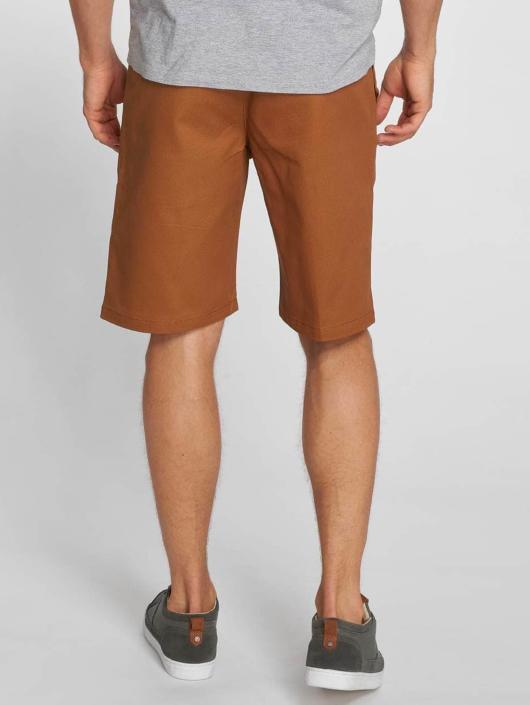Dickies Shorts Cotton 873 braun