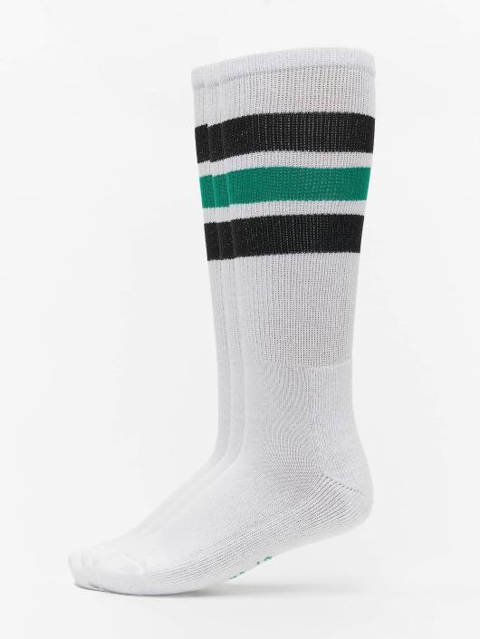 Dickies Socken Atlantic City 3-Pack weiß