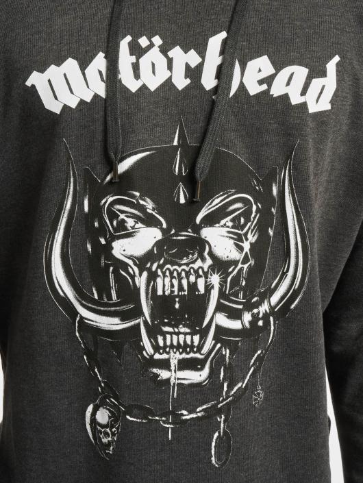 Merchcode Felpa con cappuccio Motörhead Everything Louder grigio