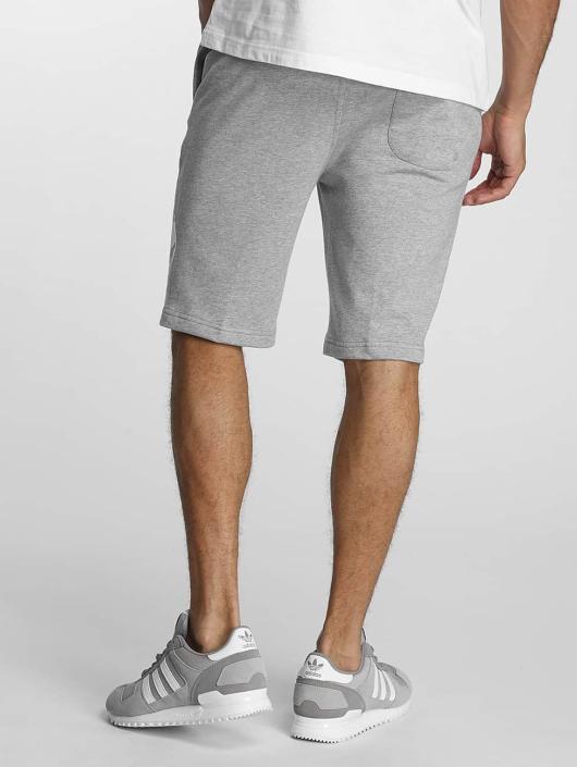 Pusher Apparel Shorts 219 Cut grau