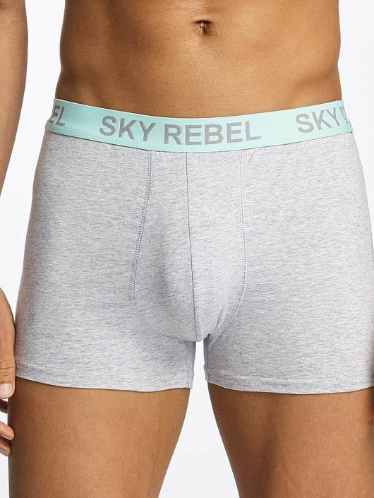 Sky Rebel  Shorts boxeros Double Pack Logo gris
