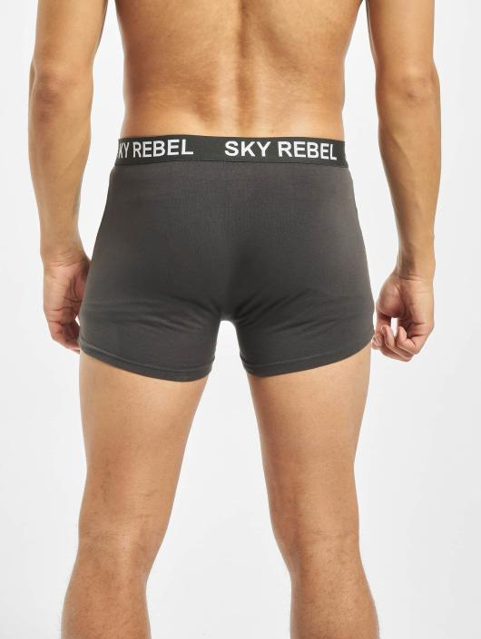 Sky Rebel Ropa interior Double Pack gris