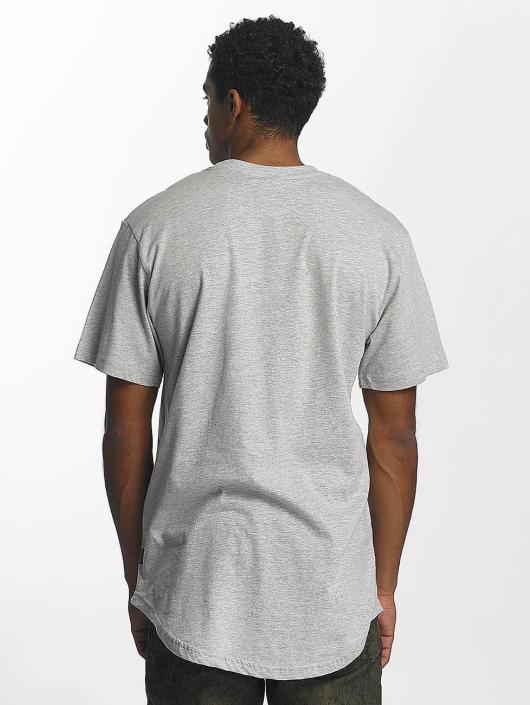 Southpole T-Shirt Badge gris