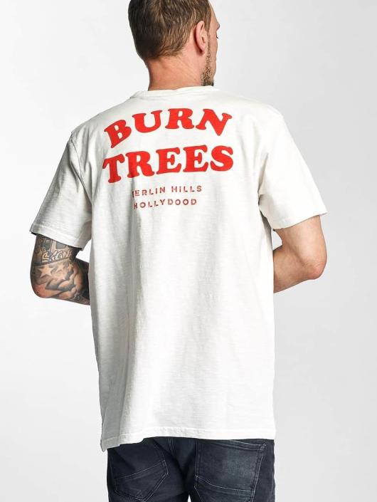 The T Burn Trees Dudes Homme 317051 shirt Blanc rshCdtQ