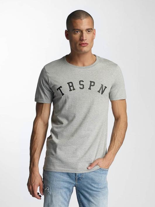 TrueSpin T-Shirt 1 grey
