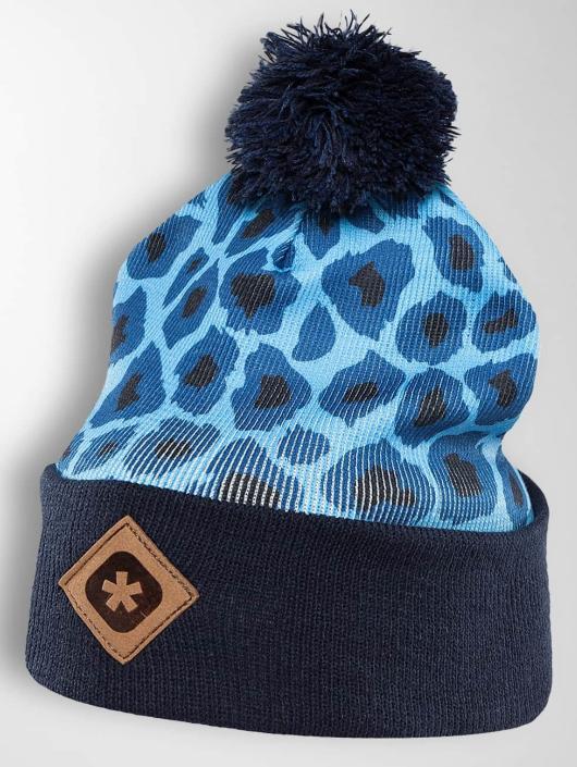 TrueSpin Wollmützen Cheetah niebieski