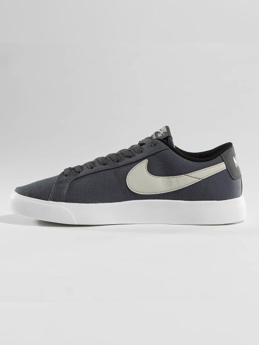 Nike SB Sneakers SB Blazer Vapor Textile Skateboarding gray