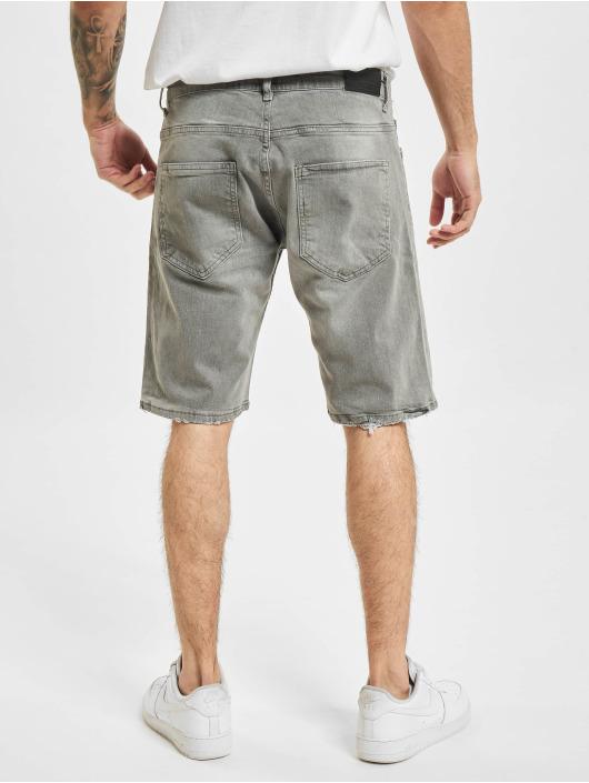 2Y Shorts Dani grå
