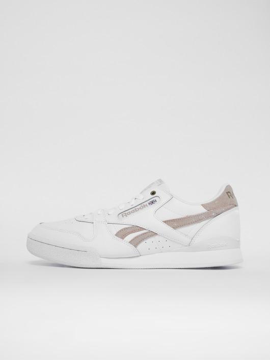 1 Reebok Phase Pro Hvid Sko Sneakers Mu I 463804 UqSzMVpG