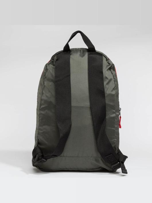 Dickies Backpack Carters Lake olive