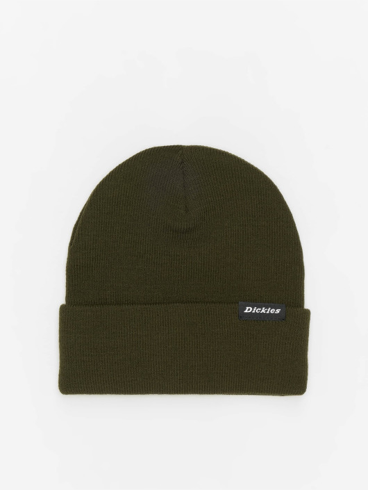 Dickies Hat-1 Alaska green