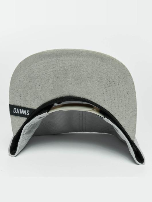 Djinns Snapbackkeps Dry Knt grå