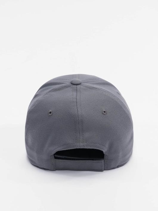 Flexfit Snapback Caps 110 Pro-Formance grå