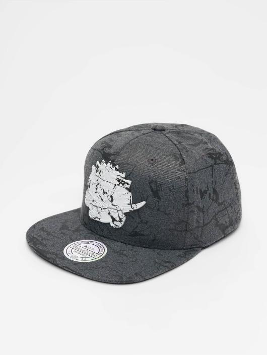 Mitchell & Ness Snapback Cap HWC Toronto Raptors Marble grey