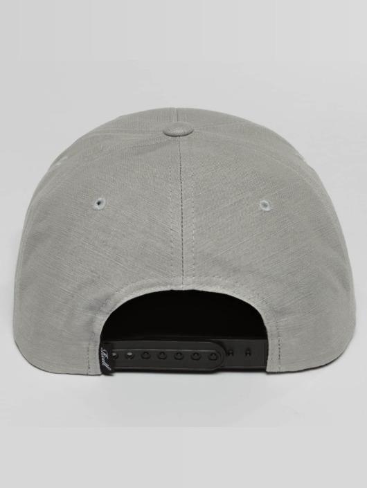 Reell Jeans Snapback Caps Suede grå