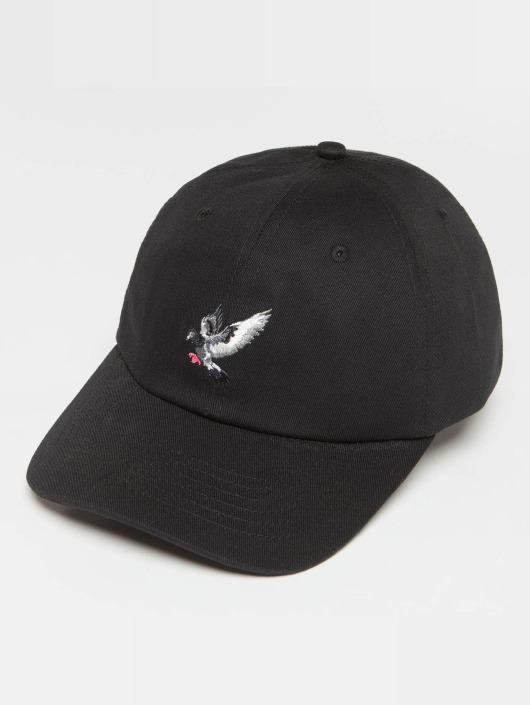 Staple Pigeon Snapback Caps Pigeon Flying svart