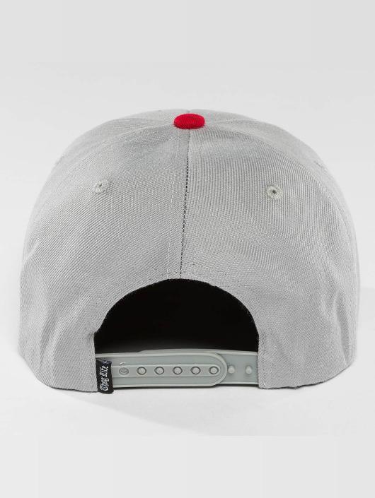 Thug Life Snapback Cap Leoprad gray