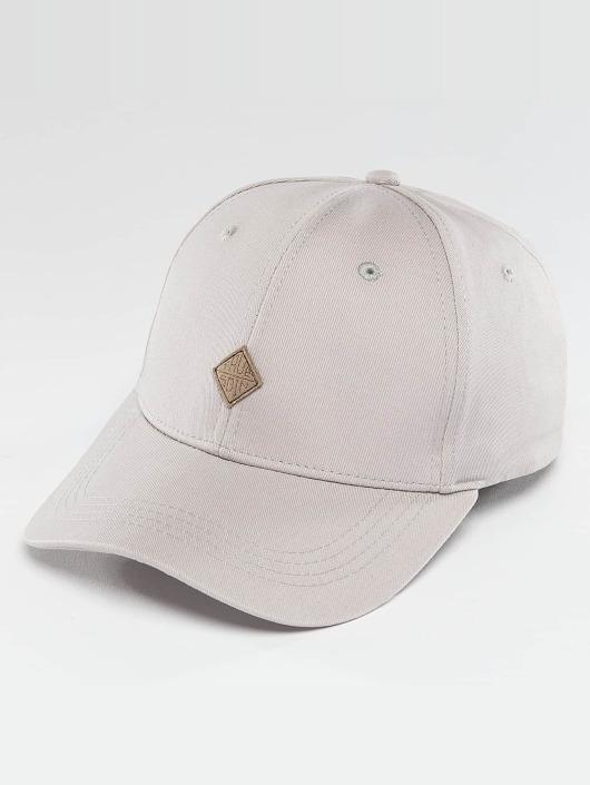 TrueSpin Snapback Caps Truely Small szary