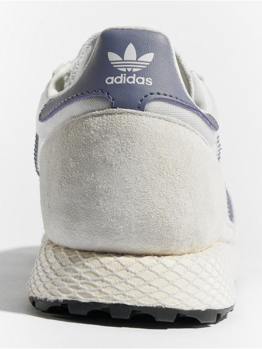 adidas originals Сникеры Forest Grove W белый